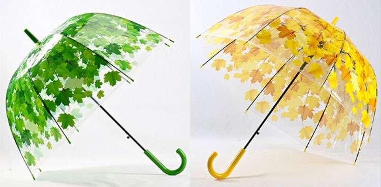 umbrellas-32636