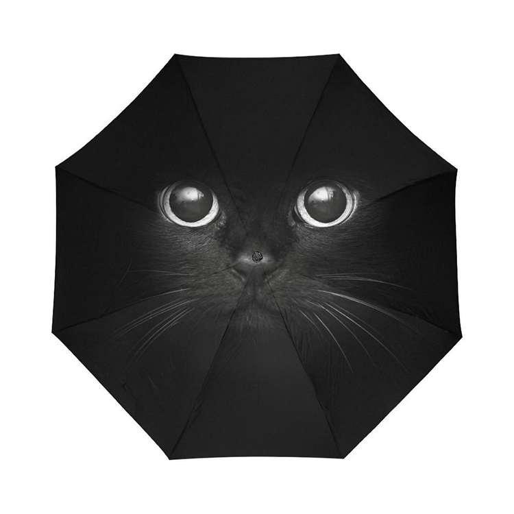 umbrellas-42672