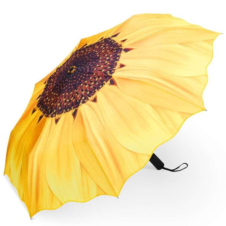 umbrellas-8495