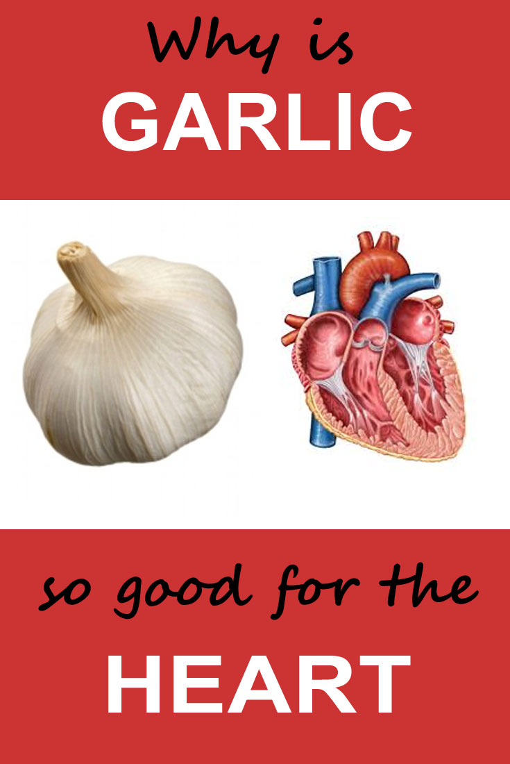 01-garlic-is-good