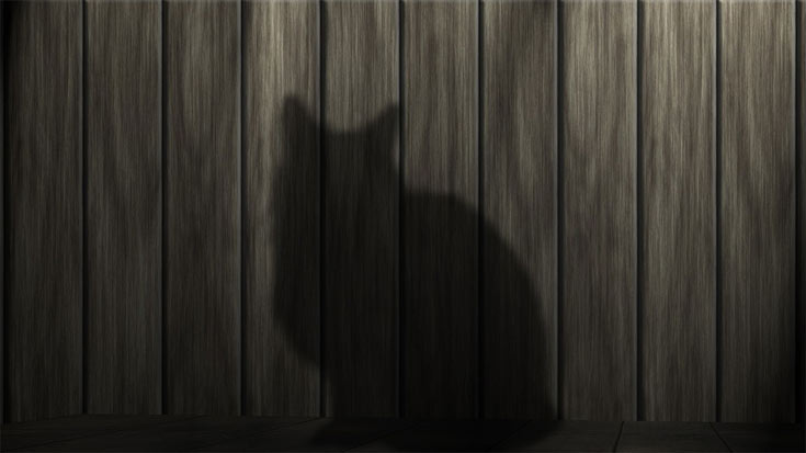 06-black-cat-power