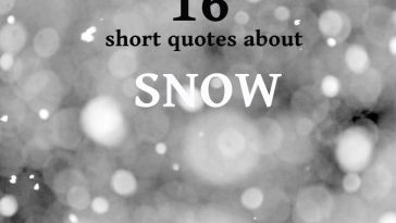 16-quotes-about-snow