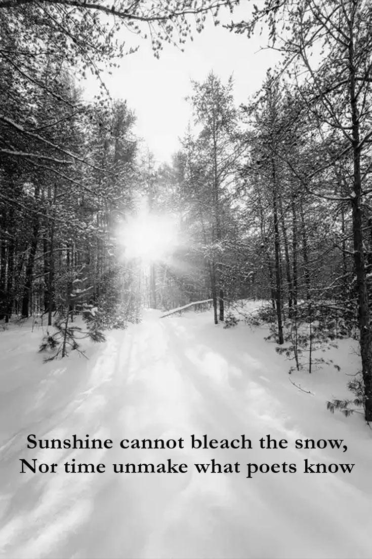 snowquote-10