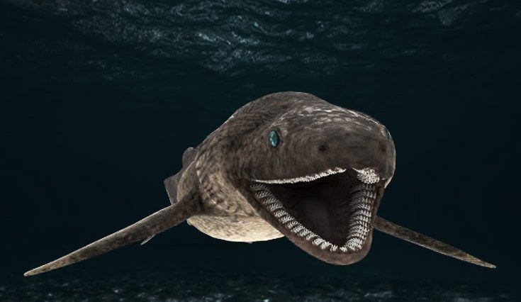 6-bizarre-sharks-you-wont-m