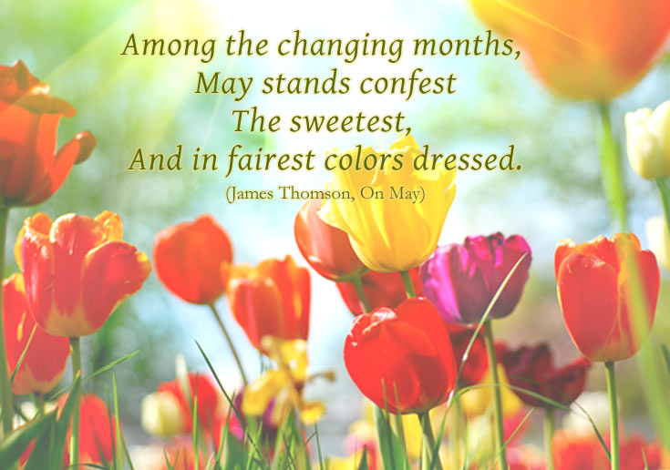 month of may quote